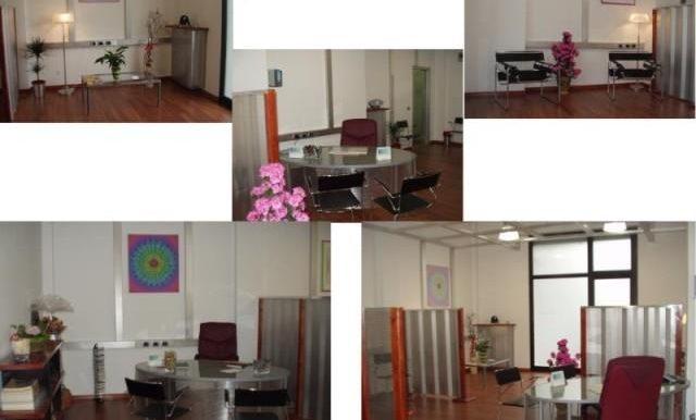studio11 (2)